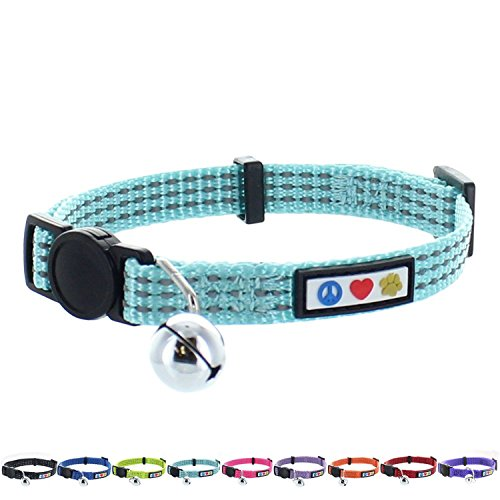 (Pawtitas Reflective Cat Collar with Safety Buckle and Removable Bell Cat Collar Kitten Collar Teal Cat Collar)