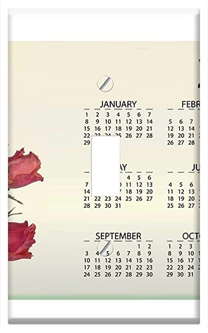 Amazon.com: Switch Plate Single Toggle - Agenda Calendar ...