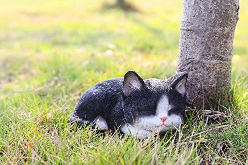 Hi- Line Gift 87699-B Kitten Sleeping Black & White Cat Statue ()