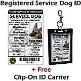 Amazon Com Service Dog Cards 50 Ada Service Dog