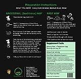 Kisa's Kava - Premium Noble Fijian Kava Root Powder (WAKA) - All Natural Stress Relief - Helps Body Relax to Improve Sleep - 24 Servings - 5