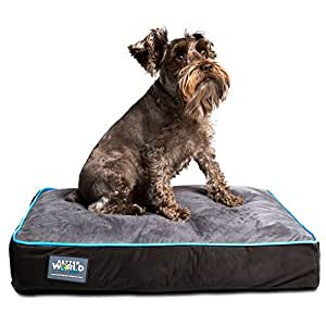 "Better World Pets 5-Inch Thick Waterproof Orthopedic Memory Foam Dog Bed with 180 GSM Removable Washable Cover, Small (24"" x 18"" x 5"") (Dogs 1-20 lbs.), Grey with Ocean Blue trim"