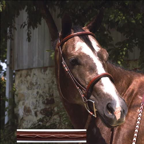 B004BPZ398 Perris Professional Fancy Stitched Padded Hunter Bridle - Size:Cob Color:Chestnu 51ycFbyrdGL.