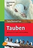 Taschenatlas Tauben: 300 Rassen für Zucht und Ausstellung (Taschenatlanten)