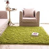 Rug WAN SAN QIAN- Children Bedroom Carpet Living Room Carpet Sofa Europe Princess Rectangle Blended Carpet Long Hair Coarse Shag (Color : Green, Size : 100x160cm)