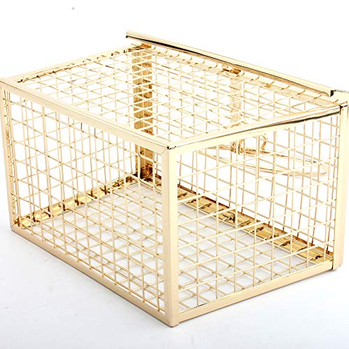 Clutch Horizontal Personality Geometric Evening Bag Shoulder Gold Cage LETODE Bag Features Women's Bag nHqwx44BT