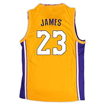 04d929766ca LeBron James Purple Jersey Number 23 Los Angeles Lakers Player 2018 ...