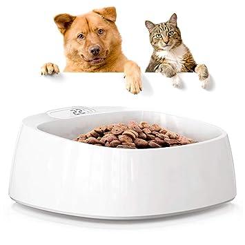 Mascota Perro Gato Ajuste De La Báscula De Pesaje Food Bowl ...