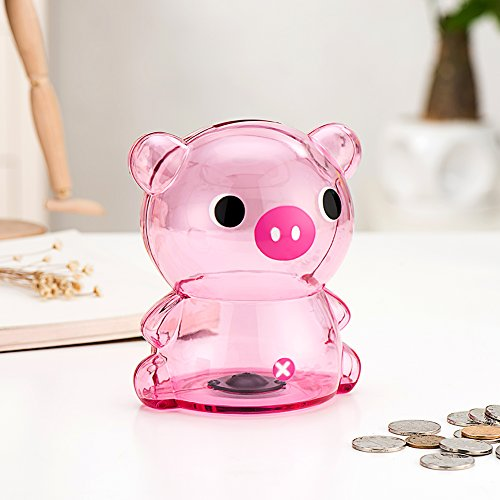 Selric Girlwill Crystal Clear Piggy Bank Pink Coin Box with Suede Drawstring Bag for Adults & Girls 5.5
