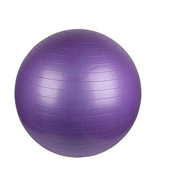 Ssery Gym Ball - Pelota de Ejercicio Anti-estallido, Fitness ...