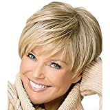 Fashion Style Short Hair Synthetic Wig Wigs for Women and Girls (Short 2)