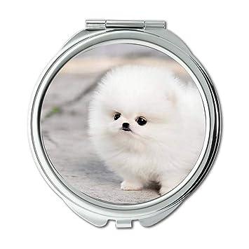 Amazoncom Mirror Makeup Mirror Animal Bull Terrier Dogs