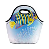 Semtomn Neoprene Lunch Tote Bag Blue Royal Angelfish One of Mostly Colorful Coral Fishes Reusable Cooler Bags Insulated Thermal Picnic Handbag for Travel,School,Outdoors,Work