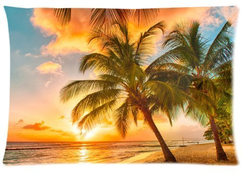 Fabulous Store Cutsom Rectangle Hawaii Summer Beach Palm Tree Sunset Scenery Pillow Cases Covers Standard Size 20x30(one side) by Pillow Case 20x30(one side)