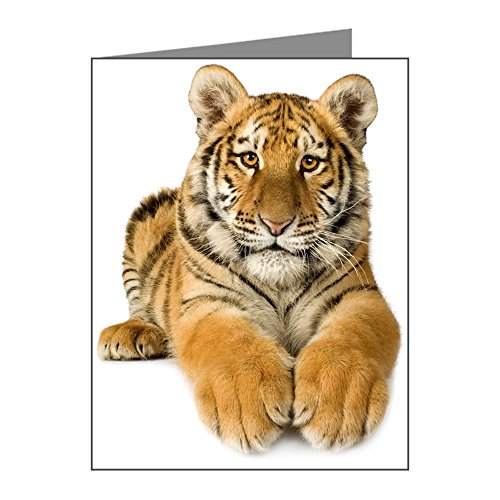 Greeting Card Bengal Tiger Youth - Bengals Card