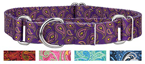 Country Brook Design | Purple Paisley Martingale Dog Collar - Medium (Grosgrain Ribbon Argyle)