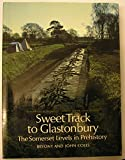 Sweet Track to Glastonbury: The Somerset Levels in Prehistory (New Aspects of Antiquity)