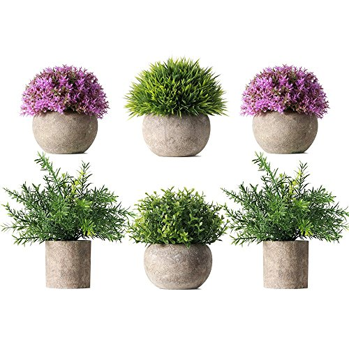 - HC STAR Potted Artificial Pant Fake Green Grass with Pot Decorative Lifelike Set of 6 (High-Foot, Green-4 & Purple-2)
