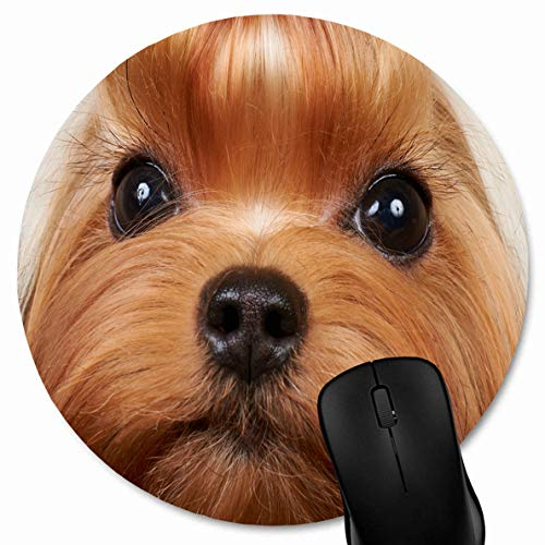JAMRON Mousepad Round Diam 8.7 Inches Grooming Brown Dog Yorkshire Terrier Long Precious Eyelashes Wildlife Show Yorkie Pet Adorable Design Non-Slip Rubber Mouse Pad Laptop Notebook