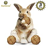 SunGrow 3 Coconut Fiber Balls Rabbit Improves Dental Health -100% Natural Chew Toy- Provides Hours Stimulation -Environment Friendly, Stress Reliever -Ideal Bunny, Chinchilla & Kitten