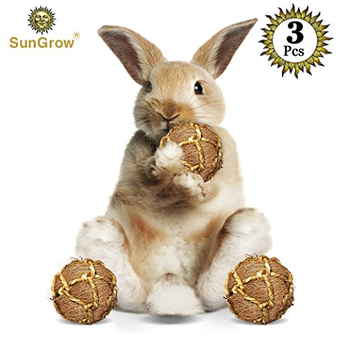 SunGrow 3 Coconut Fiber Balls Rabbit Improves Dental Health -100% Natural Chew Toy- Provides Hours Stimulation -Environment Friendly, Stress Reliever -Ideal Bunny, Chinchilla & Kitten by SunGrow