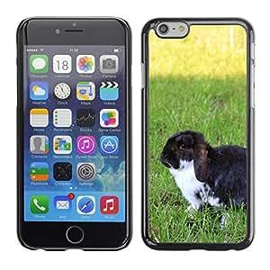 "Hot Style Cell Phone PC Hard Case Cover // M00135209 Dwarf Rabbit Garden Summer Pet // Apple iPhone 6 4.7"""