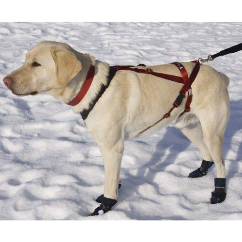 One Harness - Huge (dogs 75-120 lbs)