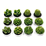 Cactus Tealight Candles, Handmade Delicate Succulent Scented Cactus Candles( Perfect for Birthday Party,Wedding, Spa, Home Decor(12 Pcs in Pack)
