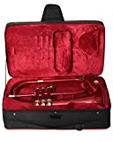FLUGEL HORN Bb PITCH RED COLOR WITH FREE HARD