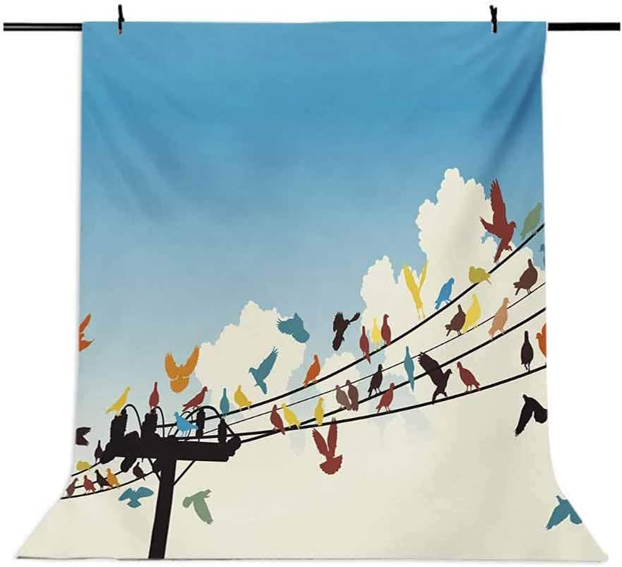 Colorful 6x8 FT Backdrop Photographers,Animal Theme Silhouettes of Colorful Birds Roosting on Telegraph Wires Pattern Background for Baby Shower Bridal Wedding Studio Photography Pictures Multicolor