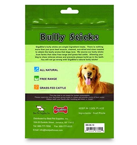 bps gigabite usda fda certified odor free braided bully sticks 6 inch 10 pcs pack pet. Black Bedroom Furniture Sets. Home Design Ideas
