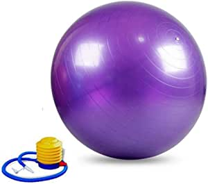 Exercise ball Purple Color - Large