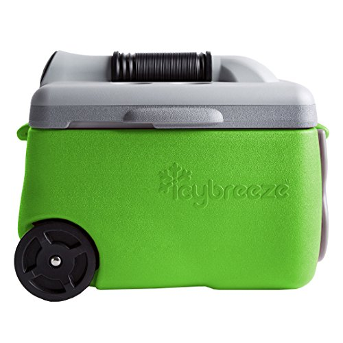 IcyBreeze Cooler Chill Package (Green, 12V)
