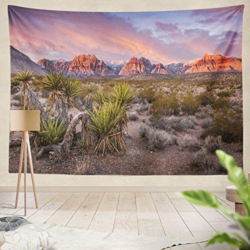 Desert Rock - Summor Tapestry Sunrise Red Rock Rock Red Vegas N al Park Desert Landscape Sky Sunrise Blue Cactus Dawn Hanging Tapestries 60 x 80 inch Wall Hanging Decor for Bedroom Livingroom Dorm