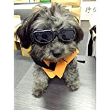 Pet Leso Doggles Waterproof Sunglasses Goggles For Cat or Small Dogs (Black)