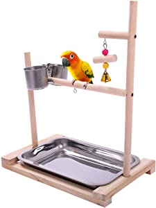 QBLEEV Bird Stand Parrot Perch Wooden Birds Play Stand Table Top Playstands Playground with Feeder Dishes Water Food Bowl for Samll Conures Parakeet Lovebirds
