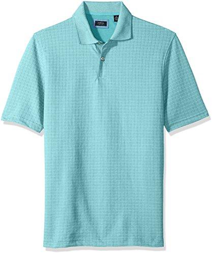 (Arrow 1851 Men's Hamilton Short Sleeve Jacquard Polo Shirt, Aqua Sea, Large )