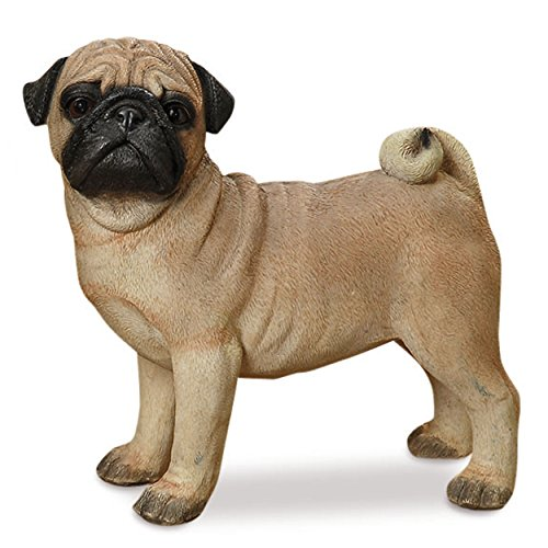 Whole House Worlds Perry Pug, The Puppy Dog Statue, For Indoor and Garden Displays, Ultra-realistic Figurine, Standing Pose, 1 Ft Tall, Hand Cast and Painted, Polyresin, By (Dog Garden Sculpture Puppy)
