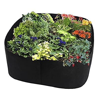 ASSR Fabric Raised Garden Bed, Rectangle Breathable Planting Container Grow Bag Planter Pot for Plants, Flowers, Vegetables size 2(L) x2(W) ft (Black) : Garden & Outdoor