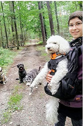 DogCarrier Sacchetto del Cane Zaino per Cani Vettore Vettore Vettore Cane Cane Zaino Borsa da Trasporto per Cani 15-30g a927dc