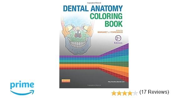 Dental Anatomy Coloring Book 2e 9781455745890 Medicine Health Science Books Amazon