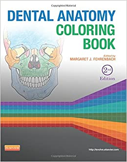 dental anatomy coloring book amazoncouk margaret j fehrenbach 9781455745890 books - Anatomy Coloring Books