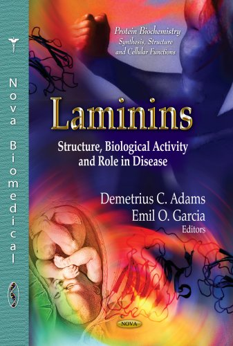 Laminins: Structure, Biological Activity and Role in Disease (Protein Biochemistry, Synthesis, Structure and Cellular Functions)