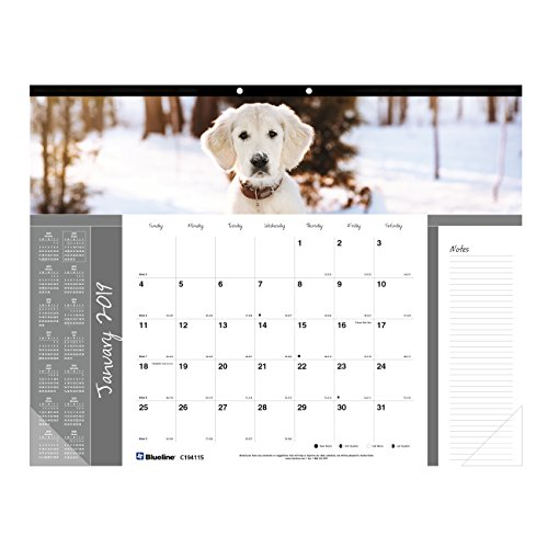 Blueline Monthly Desk Pad, English 22 x 17 inches,  Mans best friends collection (C194116-19)