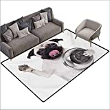 Door Rug for Internal Anti-Slip Rug Pug Cute Pug Holding Food Bowl and Licking Its Lips Hunger Image Raising Its Hand Anti-Fading W67 xL102 Cream Silver Black