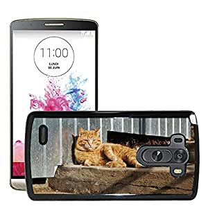Hot Style Cell Phone PC Hard Case Cover // M00130045 Cat Animal Pet View Cute Cat'S Eye // LG G3 VS985