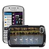 Super Stella Slim PC Hard Case Cover Skin Armor Shell Protection // M00146884 Swans Group Water Current // BlackBerry Q10