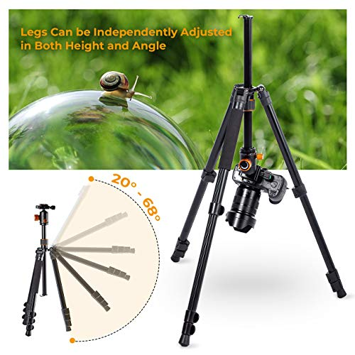 TARION Camera Tripod Monopod 61in with Panorama Ball Head Aluminium Travel Tripod for DSLR Mirrorless Cameras Support Macro Shots Counter Weight 13lb Payload Lightweight 16.9 Foldable Size