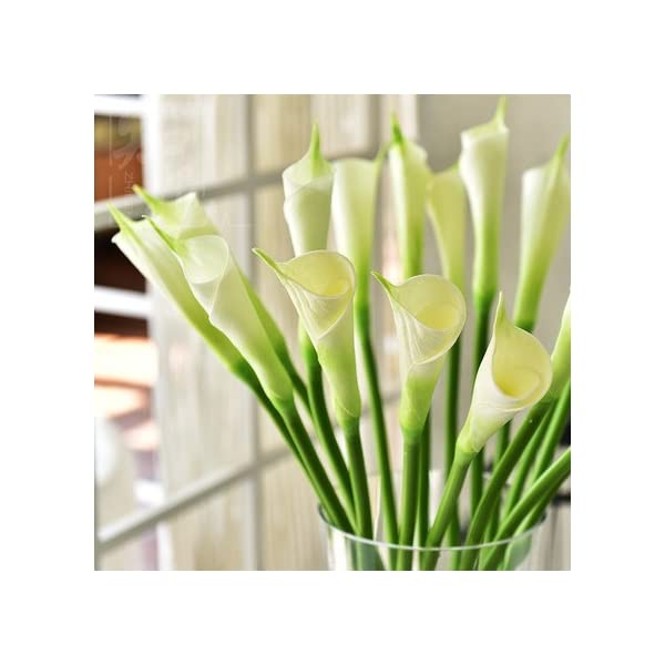 Floral Kingdom USA 25″ Large Handmade Real Touch Latex Closed Rolled Calla Lily Buds Artificial Spring Flowers for Arrangements, Bouquets, Weddings (Pack of 6) (Cool White)
