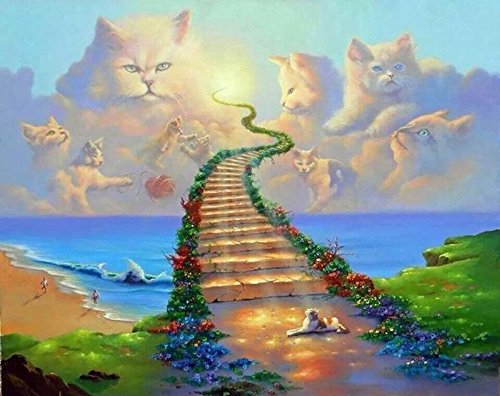 WiHome 5D Diamond Painting Kits for Adults Full Drill All Cats Go to Heaven Embroidery Rhinestone Painting